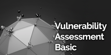 IT image that says Vulnerability Assessment Basic